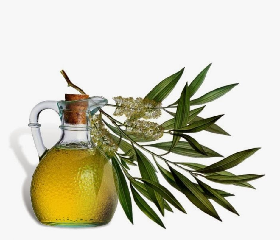 tea-tree-oil for smooth skin